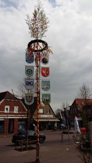 de meiboom in Neuenhaus